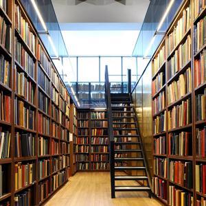 Библиотеки Тосно