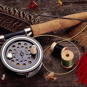 Охотничьи и рыболовные магазины Тосно